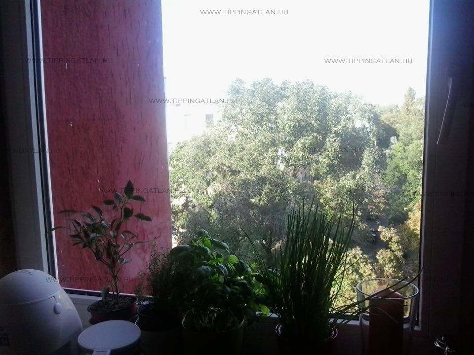 Eladó 55 m2 lakás - Budapest IX.