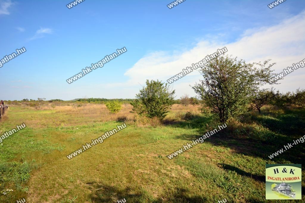 Eladó 95378 m2 telek - Mogyoród